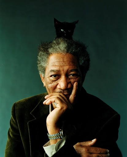 Morgan Freeman with cat