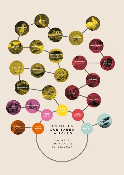 Infografía: Animales que saben a Pollo by sants serif