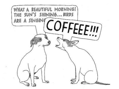 powderbluebicycle:  COFFEE!!!!