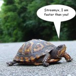 Mumble less Monday #5: Slow Slower Slowest