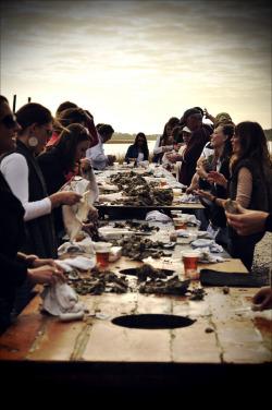 cvilletochucktown:  Lowcountry Oyster Roasts. Good living.