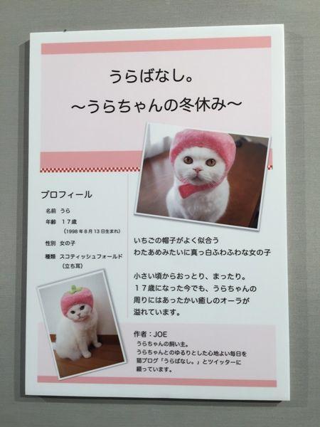 うらちゃん紹介文