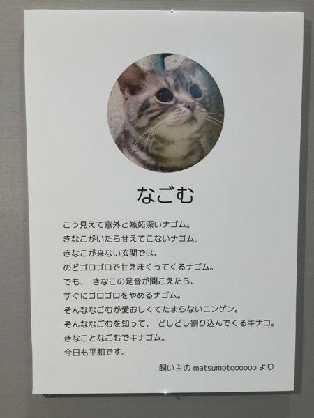 なごむ紹介文