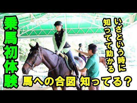 #105「馬の乗り方♪  乗馬初体験」【かんばん娘】