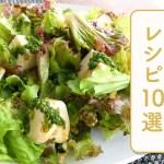 クラシル 人気のサラダレシピ10選🥗
