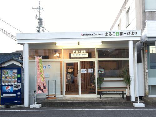 猫カフェ,まるこ日和,鈴鹿