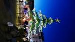 Manège sapin sur le marché de Noël du Mans