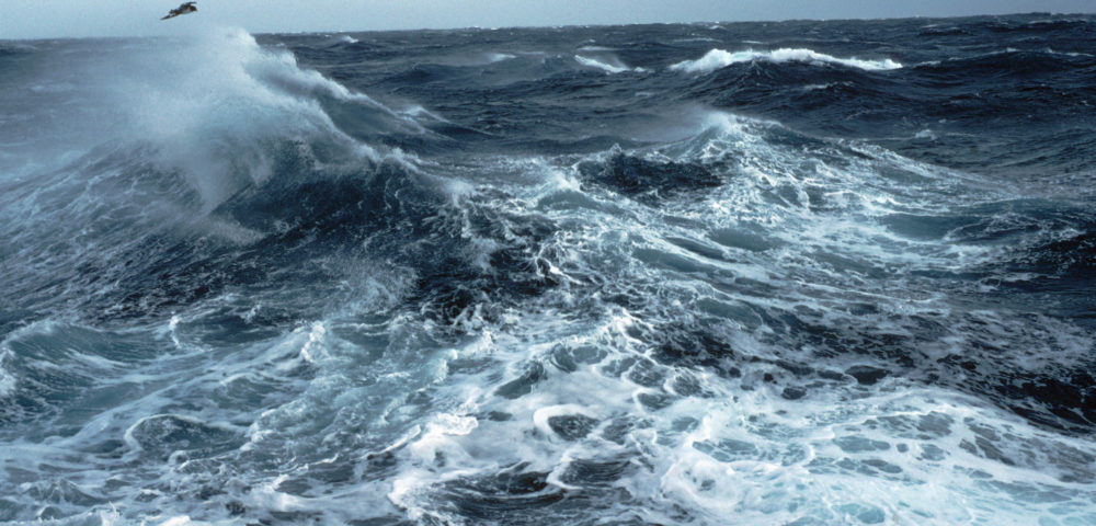 the southern ocean has