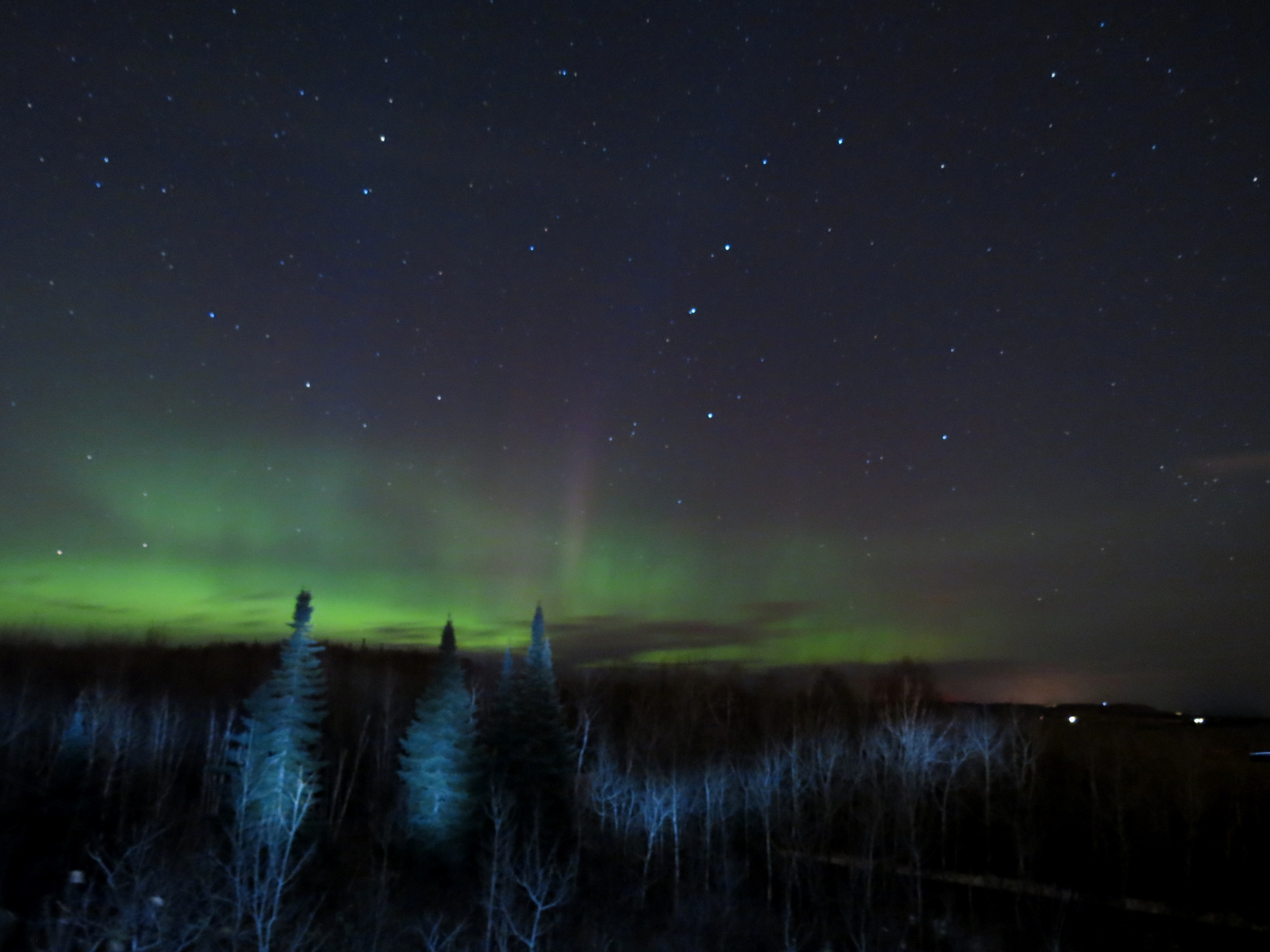 Northern Lights Employment