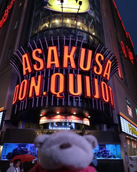 IMG 0027 e1511270685134 683x1024 15 Travel Experiences and Things to do in Tokyo Japan!