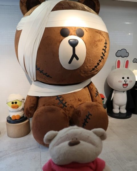 Brown Bear and Cony Bunny Line Characters