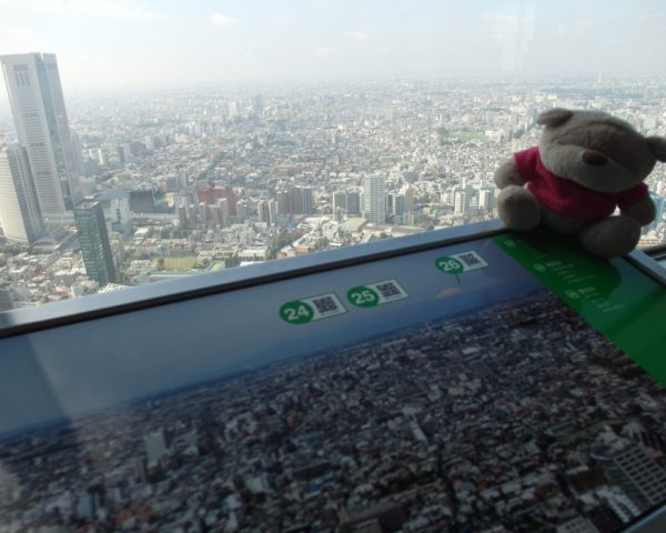 SAM 7717 1024x768 15 Travel Experiences and Things to do in Tokyo Japan!