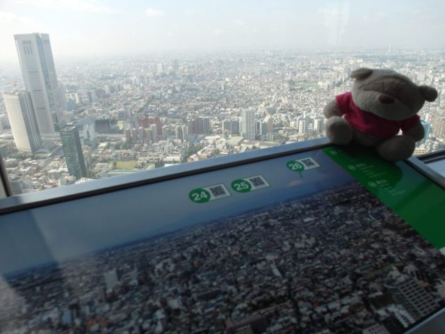 SAM 7717 1024x768 12 Days of Japan Travels: Tokyo Metropolitan Government Building Shinjuku Pablo and Shibuya Day 2!