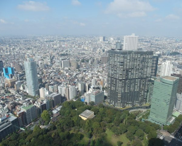 View from South Tower Tokyo Metropolitan Government Building
