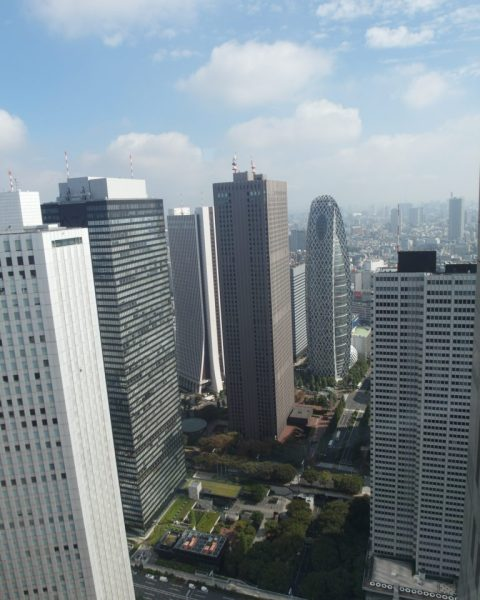Another View from South Tower Tokyo Metropolitan Government Building