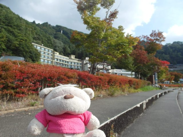 Autumn leaves around Lake Kawaguchiko Mount Fuji