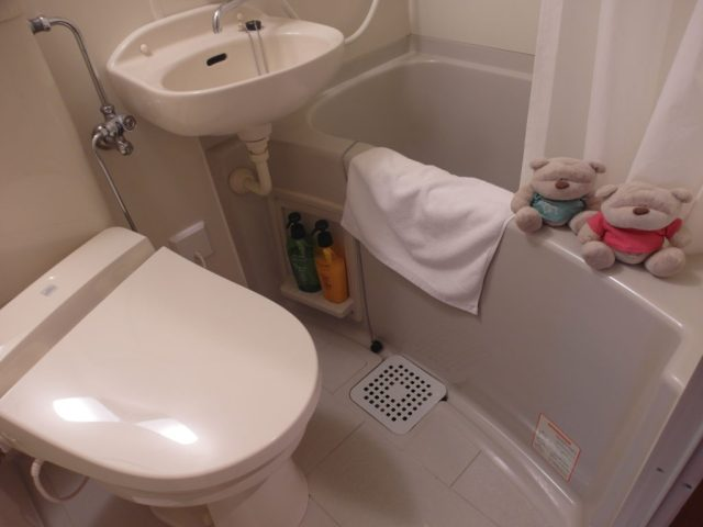 Bath Tub Fujizakura Inn