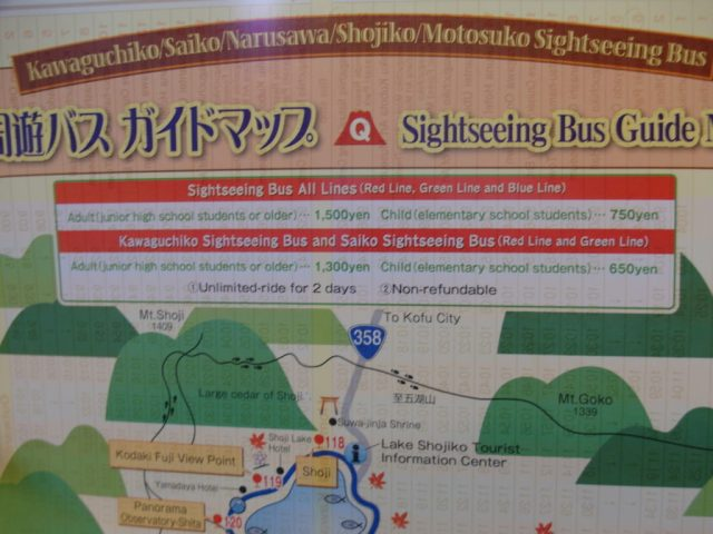 Sightseeing Bus Tour around Mount Fuji Lakes