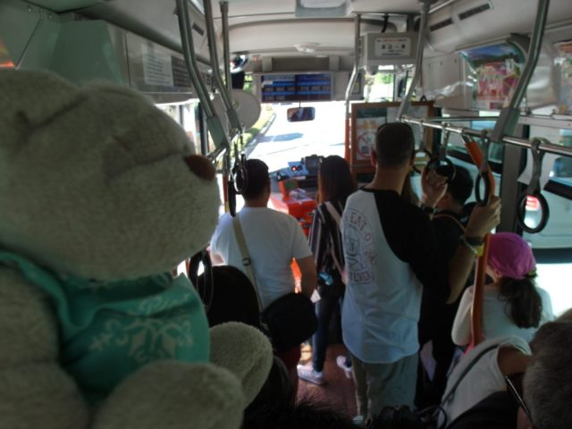 Inside Mount Fuji Sightseeing Bus - Per Trip Price indicated on screen above bus driver