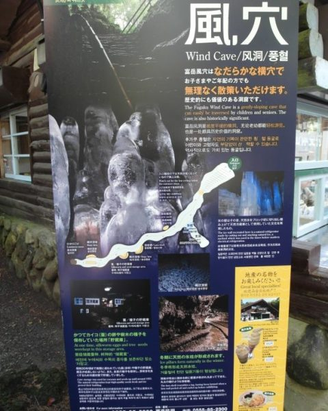 Untitled194 e1510575517821 12 Days of Japan Travels: Lake Saiko Wind Cave, Ide Brewery Mount Fuji and Bus Ride to Takayama Day 5