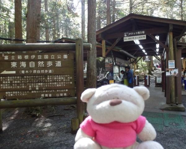 Entry of Fugaku Wind Cave Lake Saiko