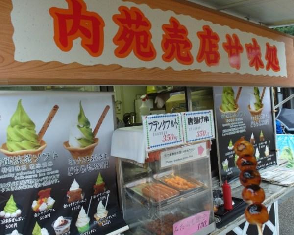 Grilled Japanese Mochi
