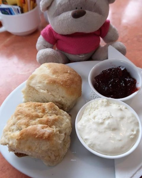 2 scones from Flaxton Barn ($6.9)