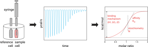 small resolution of itc isothermal titration calorimetry thermodynamics affinity stoichiometry