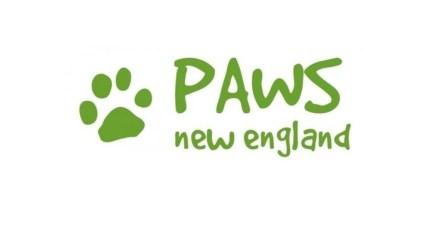 Image Credit: PAWS New England