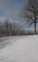 snow cast