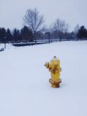 hydrant_cr