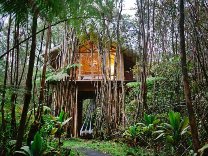 tropical-treehouse