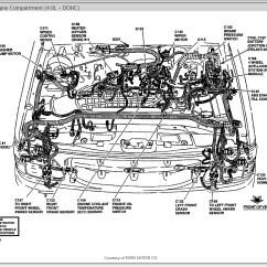 2002 Isuzu Rodeo Engine Diagram Large Heart Label 1999 Transmission Problems Imageresizertool Com