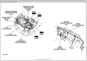 Immobiliser In Cars  Wiring Diagram And Fuse Box
