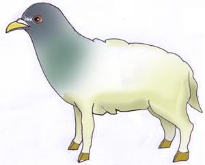 Pigeton
