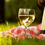 Summer Picnic Wines