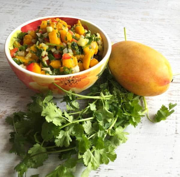 Mango Salsa | 2CookinMamas