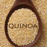 Quinoa: A Recipe for a Healthy Diet