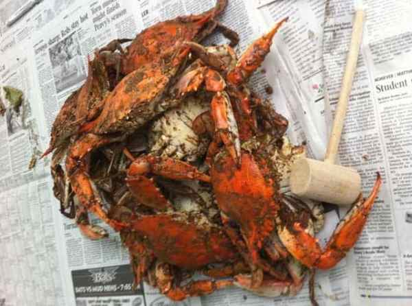 Blue Crabs on newspaper