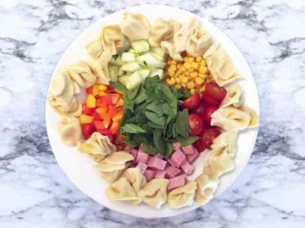 Garden Tortellini Salad with ham overhead | 2 Cookin Mamas