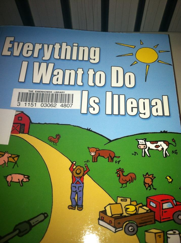 Fun Illegal Things To Do As A Teenager : illegal, things, teenager, Illegal, Things, While, Farming, Children's
