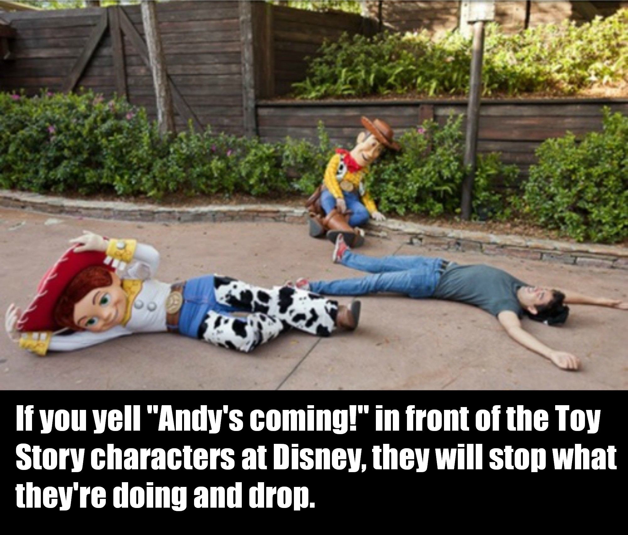 Yelling Andys Coming At Disneyland Will Make Awesome