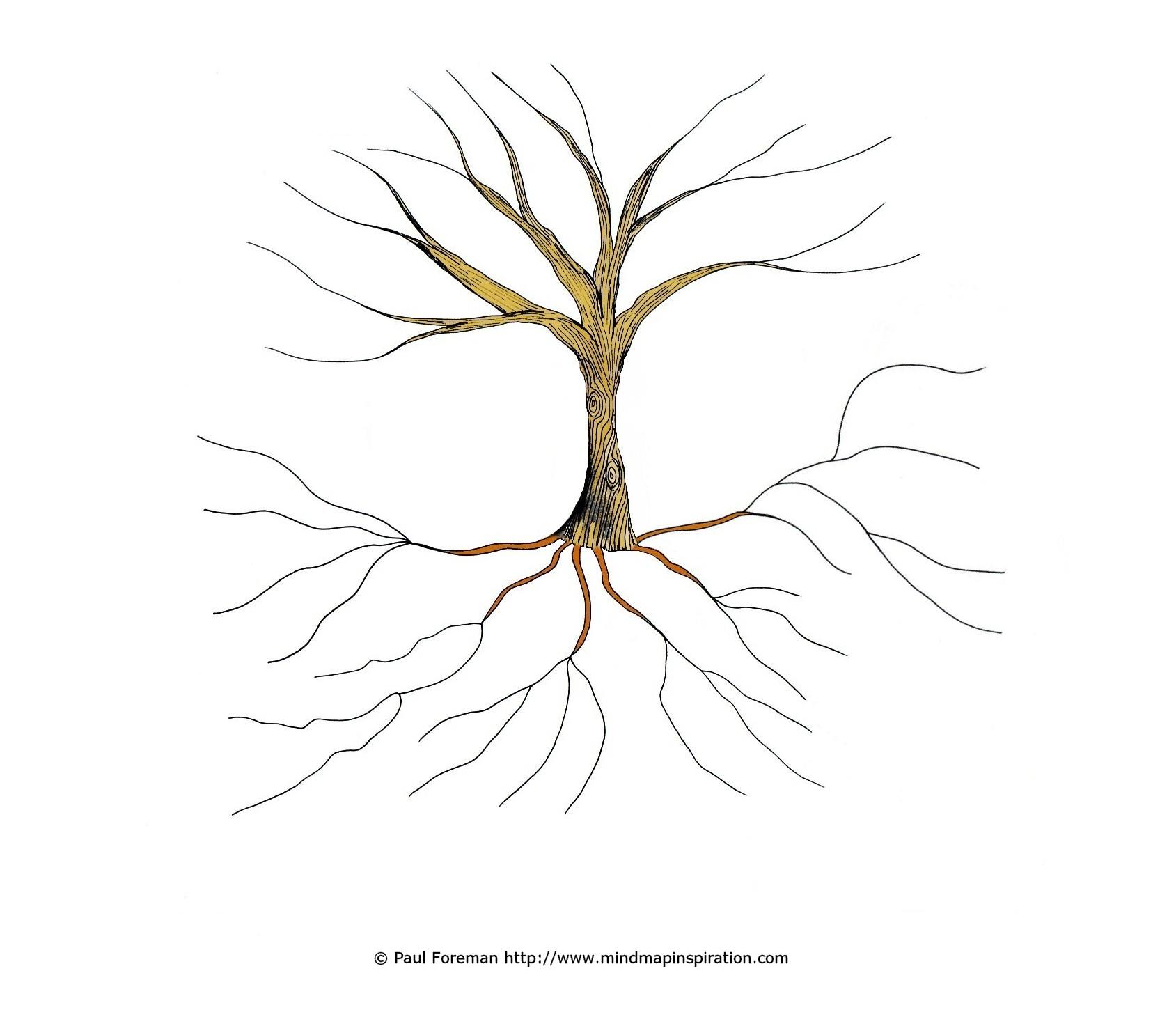 blank tree diagram graphic organizer briggs stratton nikki carburetor 2differentiate art