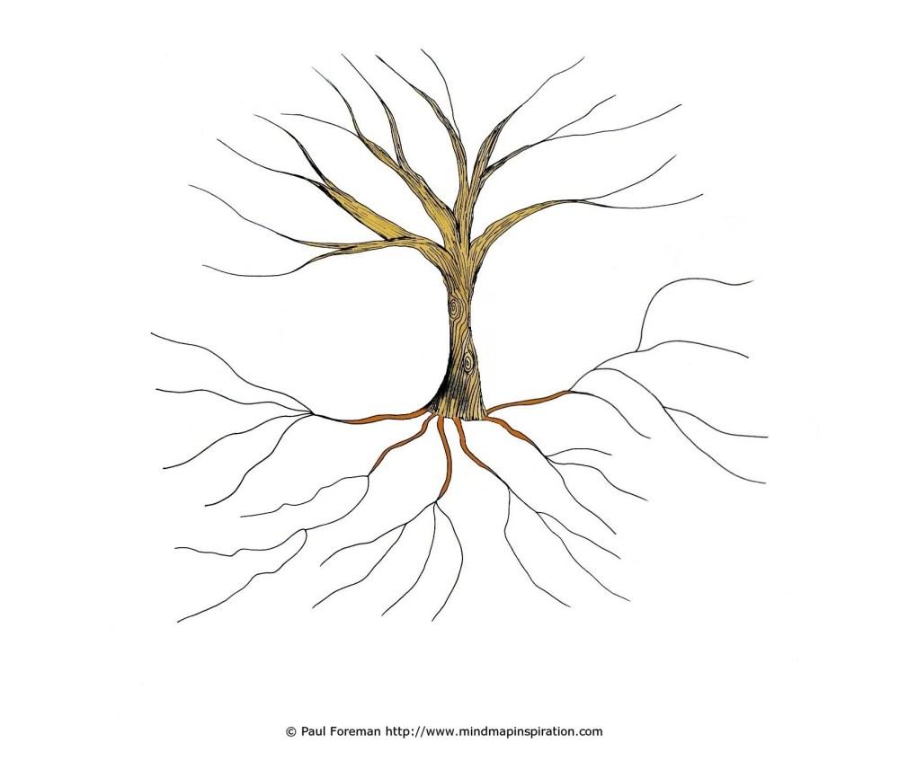 medium resolution of tree template process template frayer diagram template