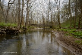 The stream makes it's way under a suspension bridge in Cedar Creek Park.