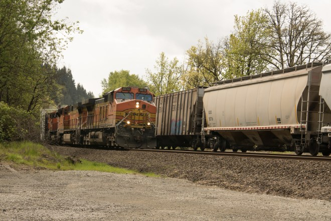 BNSF gaining ground on a slower, lower priority UP freight. Both are headed north at the Ridgefield National Wildlife Refuge north of Vancouver, WA
