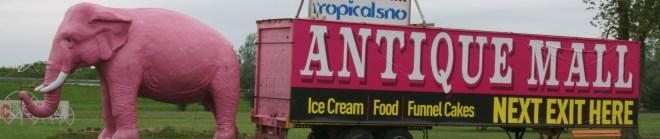 Pink Elephant banner photo