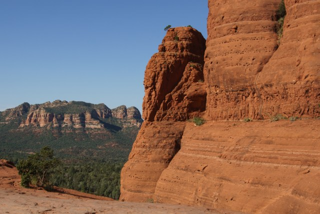 I love the little tree growing from the rock on Chicken Point in Sedona, Arizona