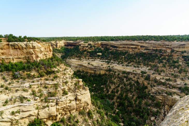 Cliff Palace and Mesa Verde