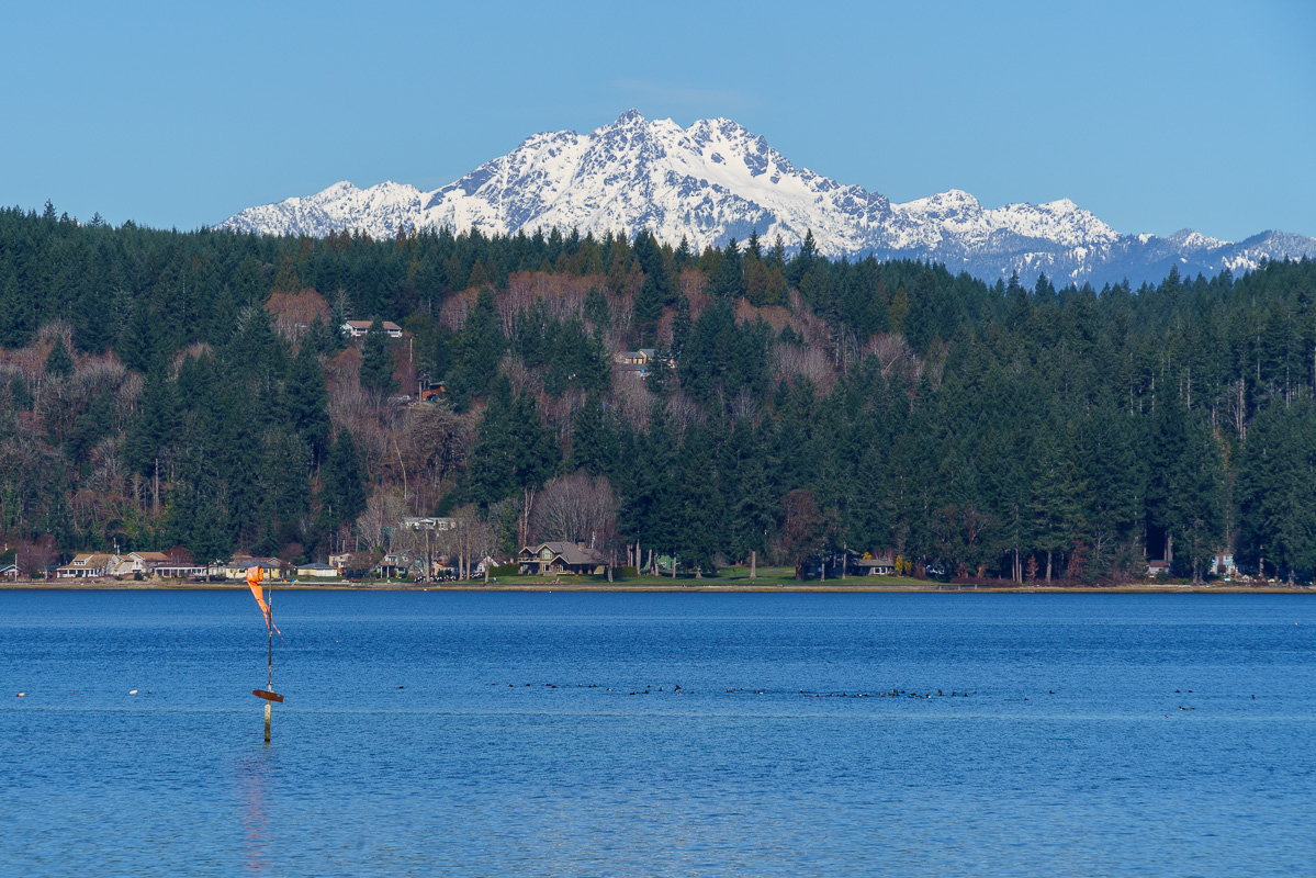 20170310 Hood Canal and Port Townsend ILCE-7RM3 FE 24-240mm F3.5-6.3 OSS HWT00179